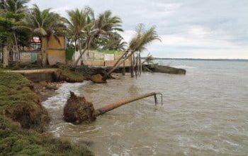 Frenar la erosión costera