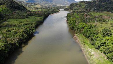 Proyecto para proteger la amazonía