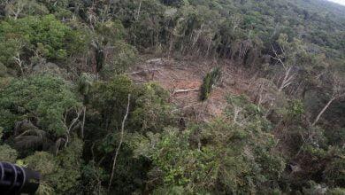 bombardeo en Caquetá